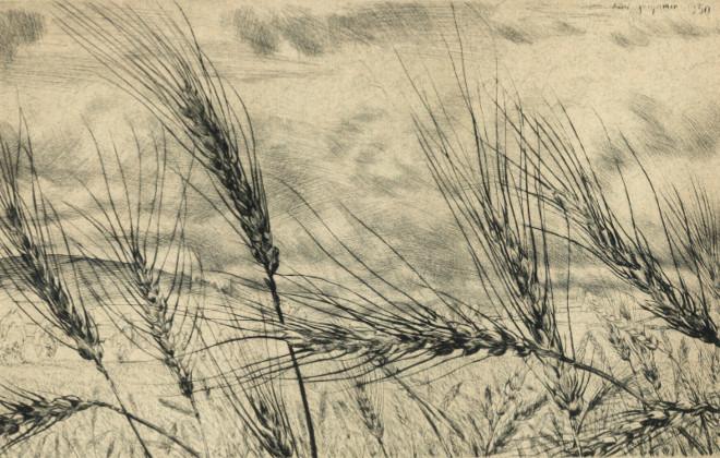 Exposition André Jacquemin - Blé primitif en Velay